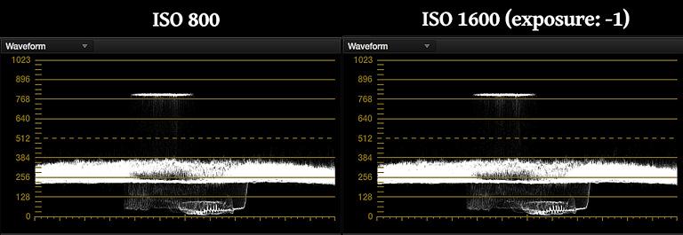 ISO 800 vs ISO 1600 (exposure: -1)
