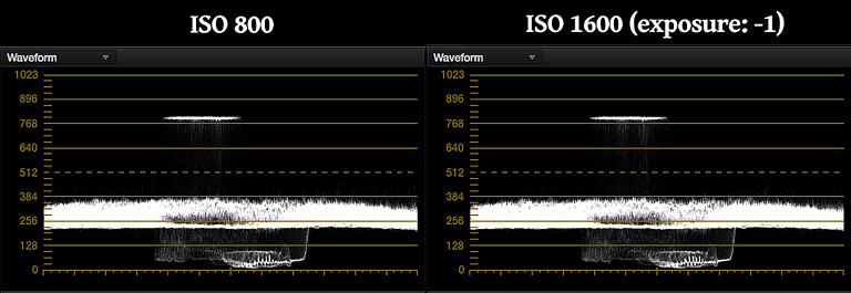 ISO 800 vs ISO 1600 (exposure: -1)